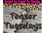 Teaser Tuesday: Four Bradwells