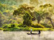 Photography Inspiration From Gregorius Suhartoyo