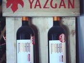 Yazgan, Family Affair