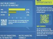 2012 Small Business Marketing Survey (Infographic)