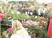 Gardener's World Live Comes Town