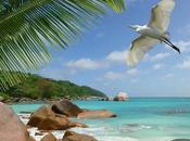 Photos Sweet Seychelles