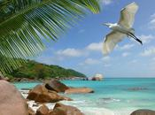 Photos Sweet Seychelles