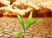 Causes Effects Soil Pollution