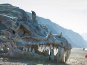 40-foot Dragon Skull Spotted Beach