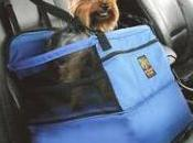 Travelling with Your Pet? What Can't Leave Home Without
