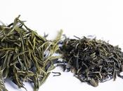 Quality Matters- Green Your Tea?