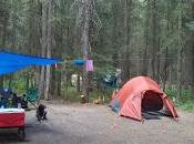 Summer MOMday: Campground Review Johnston Canyon (Banff,
