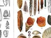 Neanderthals Invented Specialised Bone Tools
