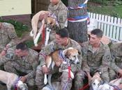 Afghan Vets Reunited with Battlefield Dogs