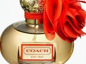 Fragrances Fall