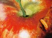 Cult Apple
