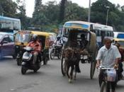 DAILY PHOTO: Crossing Street Bangalore