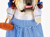 CUTEST Halloween COSTUMES DOGS 2013!