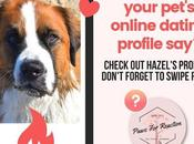 Your Could Featured: Send Pet's Online Dating Profile Find Perfect Match!