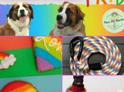 Puppy Pride: Products Celebrate Pride Month Style