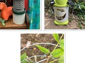 Product Reviews: Hozelock Pure Sprayer, Insect-O-Cutor Nomad Spiraclimb Plant Support.