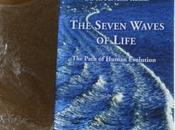 """Unpacking """"The Seven Waves Life"""""""