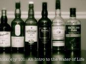 Booze Education: Giving Advice Next Generation Whisk(e)y Lovers