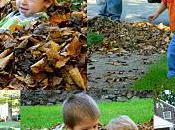 Fall Photo Bomb