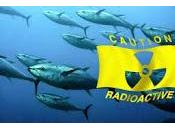 Alaska Fuked Now? Scientists From Concerned About Fukushima Radiation (Video)