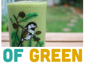 eBook Review: Days Green Smoothies Copy!