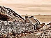 Road Skomer, Pembrokeshire, Wales#orpheantwitch#wales#camera+