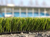 "Guest Post: ""Should Fake It?: Pros Cons Artificial Lawns"" Gabby Roxas"