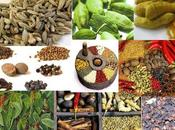 Tourism Department Preparing More Spice Sector