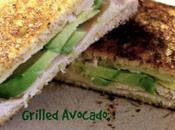 Grilled Cheddar, Turkey, Avocado Sandwich