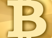 U.S. Government Looking Cash Seized Silk Road Bitcoins