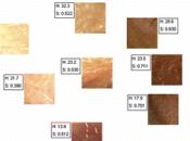 Skin, Hair Colour Still Evolving Recently 4,000 Years