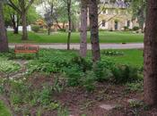 SUCCESS Guerrilla Gardening Neighbour's Yard