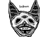 Review: Bedroom Grow