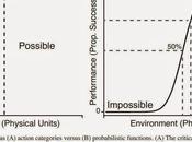 Affordances Probabilistic Functions