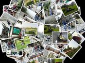 Make Collage Using Facebook Images