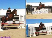 Jumping Around Barn