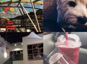 Week Photos