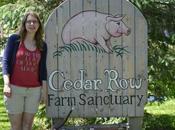 Cedar Farm Sanctuary Summer Peace
