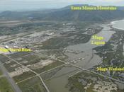 Illegals Bring Pneumonia Swine Calif-Texas Navy Bases