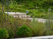 Phipps Conservatory Botanical Garden