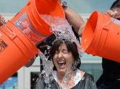 Bucket Challenge Became Worldwide It's Meme